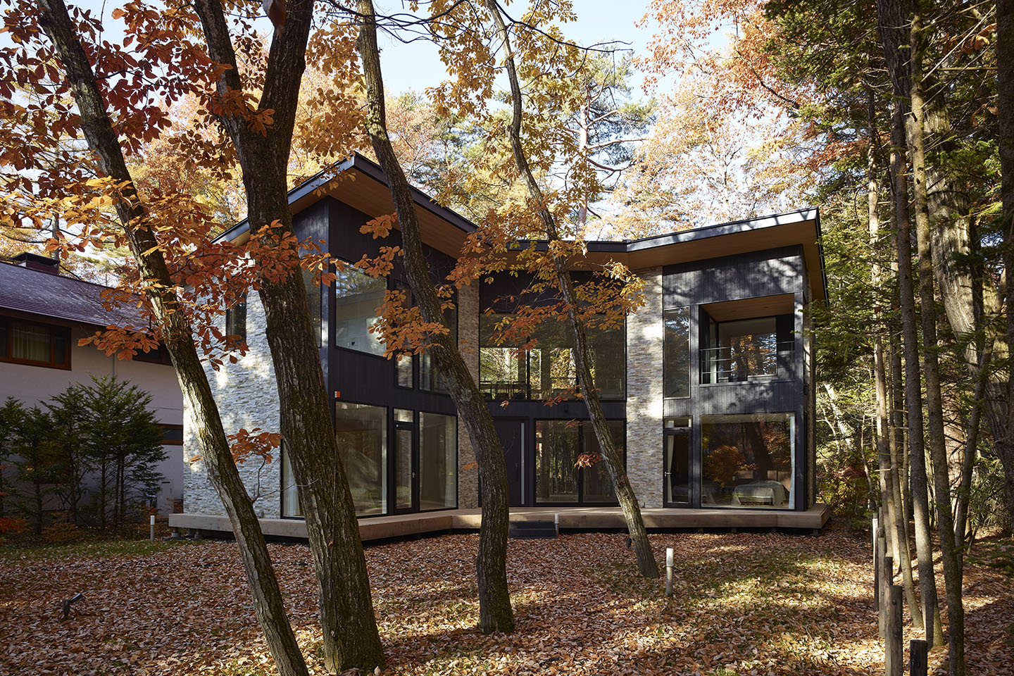 Villa In Forest 05