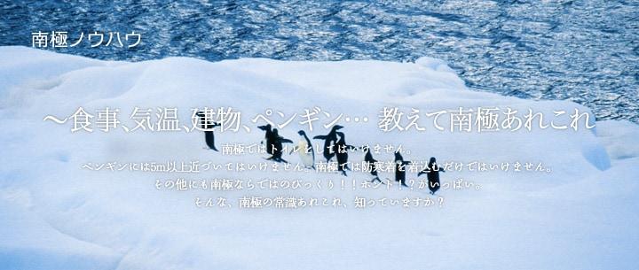 南極の歩き方 | 南極ノウハウ | ミサワホーム