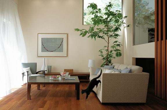 室内の汚れた空気を 効率よく外に排出する。