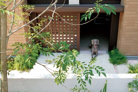 快適な空間づくりに犬の習性を取り入れる