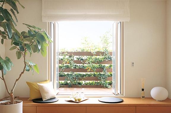 緑のカーテンで夏を涼しく快適に