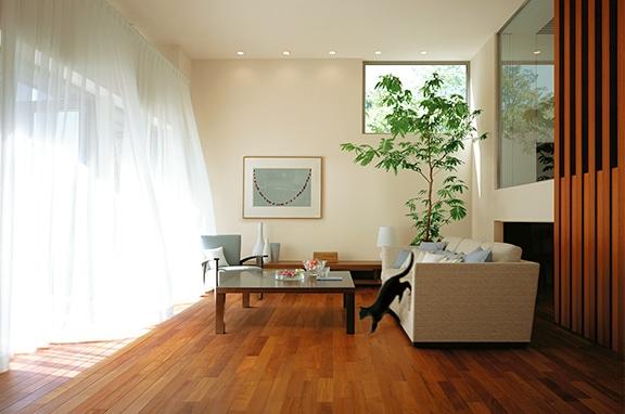 猫には、立体的空間と 自由に移動できる室内環境を